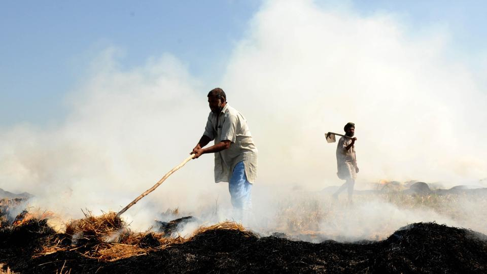 Punjab news,Pollution,Stubble burning