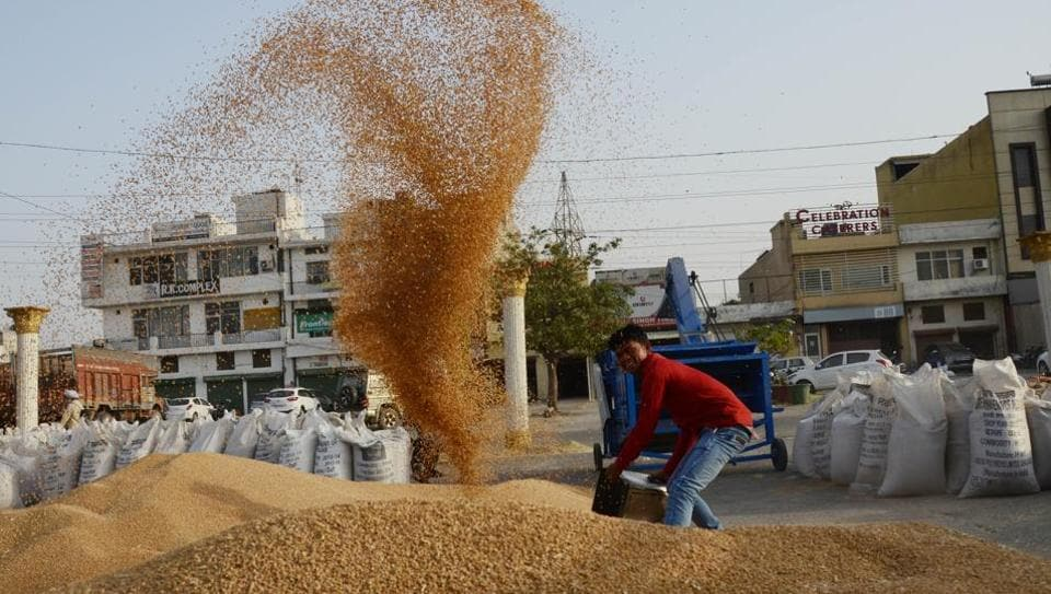 Minimum Support Price,Wheat,Pulses