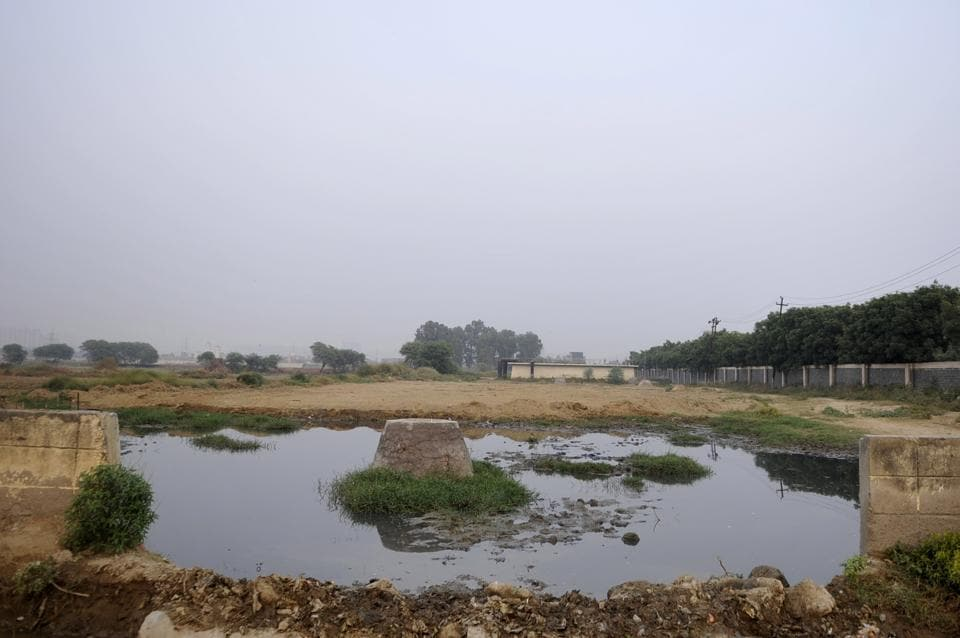 The Noida authority will start dumping the city's waste at Sector 123 landfill once it receives NGT's written order.