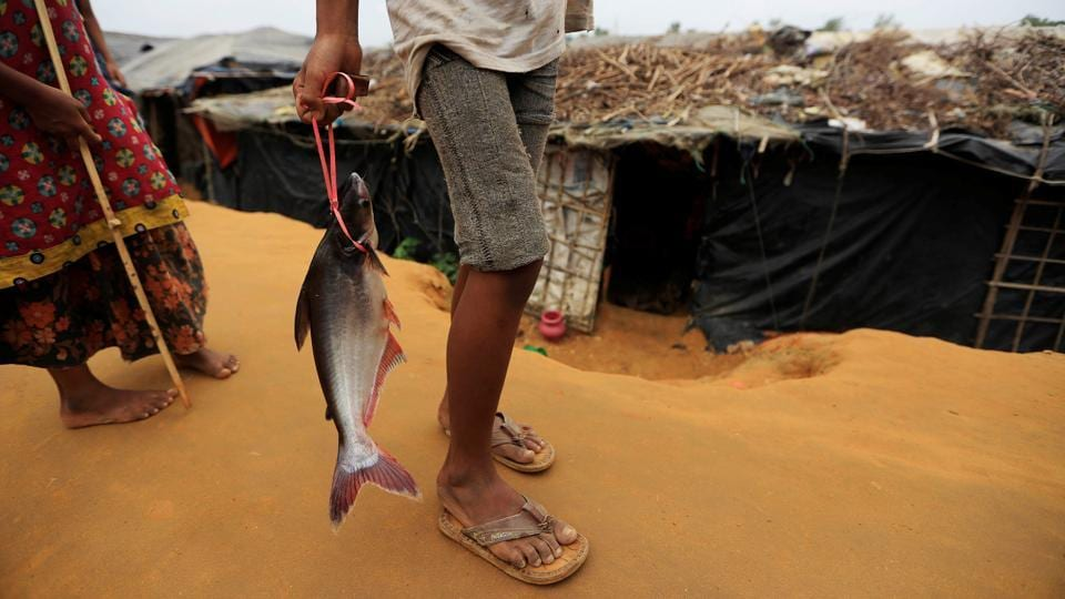 A Rohingya refugee boy carries a fish from a haul in Kutupalong refugee camp near Cox's Bazar on October 21, 2017. (Zohra Bensemra / REUTERS)