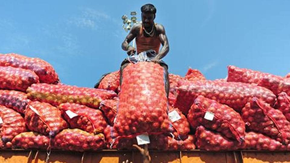 onion,prices,maharashtra