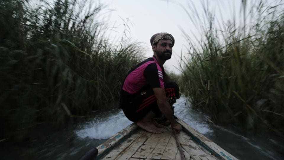 A young man drives a boat through towering reeds in the marsh of Chabaish, Iraq. The marshes, a lush remnant of the cradle of civilization, were reborn after the 2003 fall of Saddam Hussein when residents dismantled dams he had built a decade earlier to drain the area in order root out Shiite rebels.  (Susannah George / AP)
