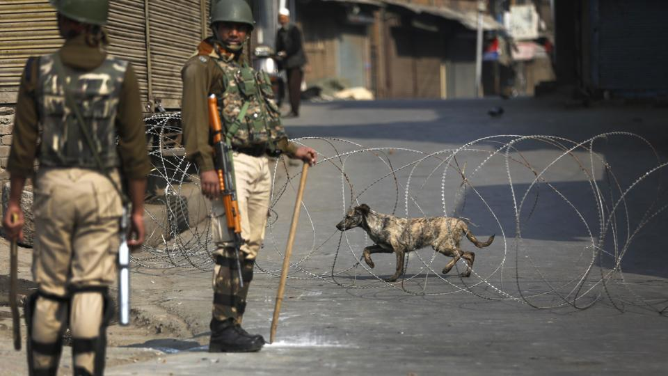 A stray dog walks across barbed wire at a temporary check post as Indian paramilitary soldiers stand guard during a strike in Srinagar on Friday.