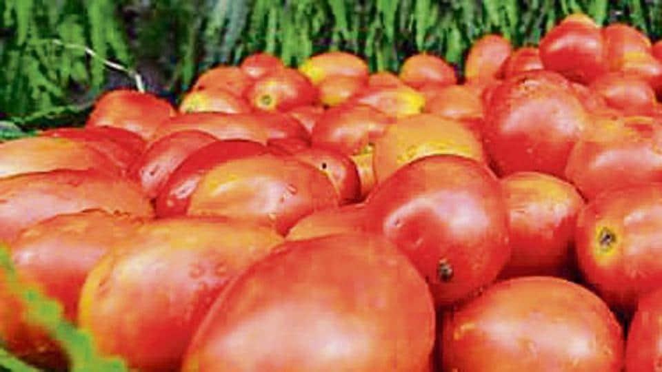 PAU,Ludhiana,Agriculture