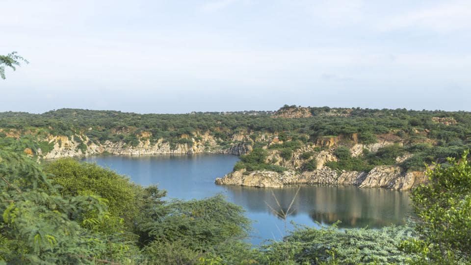 Aravalli Hills,Aravalli Utsav,Delhi
