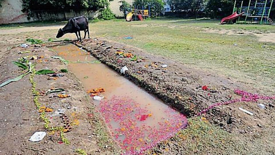 Devotees created a temporary water body at a park in sector 47, Chandigarh for Chatth Puja on Friday