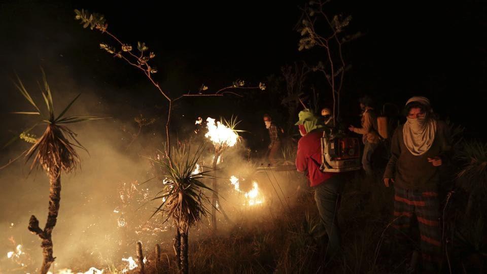 Brazli wildfire,Fire,Blaze