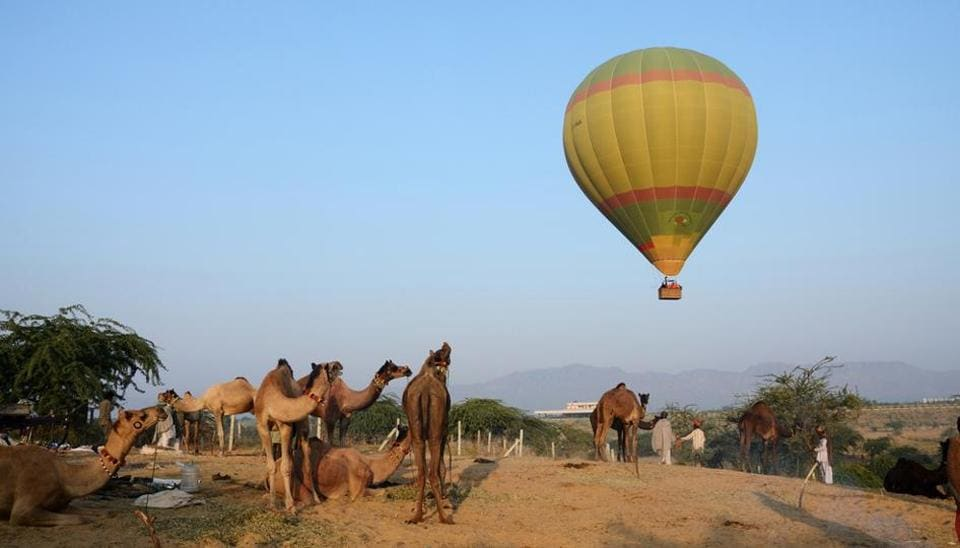 The Pushkar camel festival is one of the most highly-rated experiences in India.