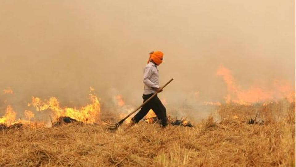 stubble burning incidents,stubble burning,air quality index