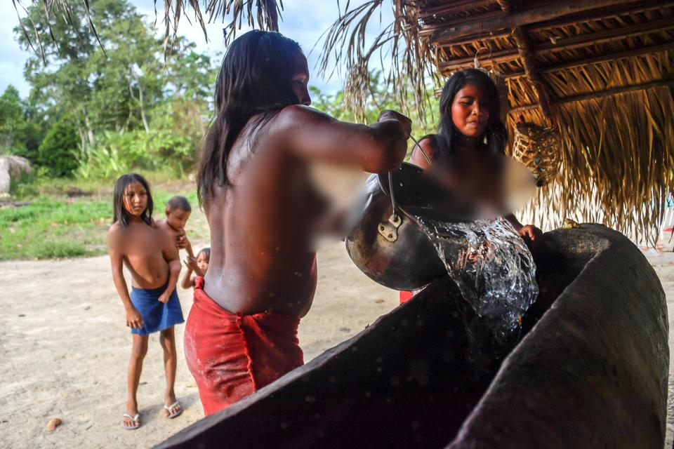 Waiapi women pour water in a canoe to prepare Caxiri, a native beer made with Manioc which men, women and children imbibe daily when is not sour yet, at the indigenous reserve Waiapi in the Manilha village in Amapa state in Brazil on October 13, 2017.