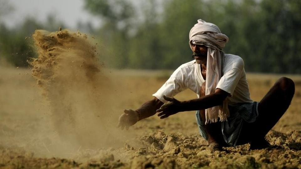 The agricultural cooperative societies cater to fertiliser needs of 95% of the farmers who are into wheat cultivation.