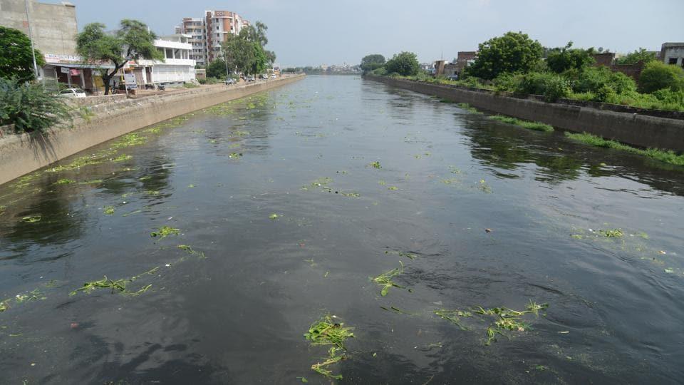 Madhya Pradesh,Rajasthan,Chambal