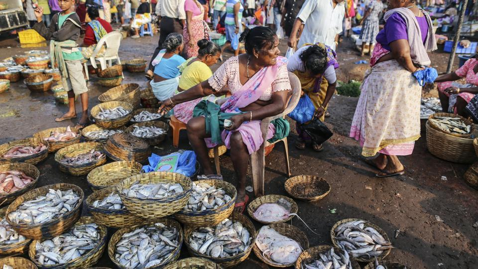 Fish famine puts goans in a curry over export ban india for Wholesale fish market