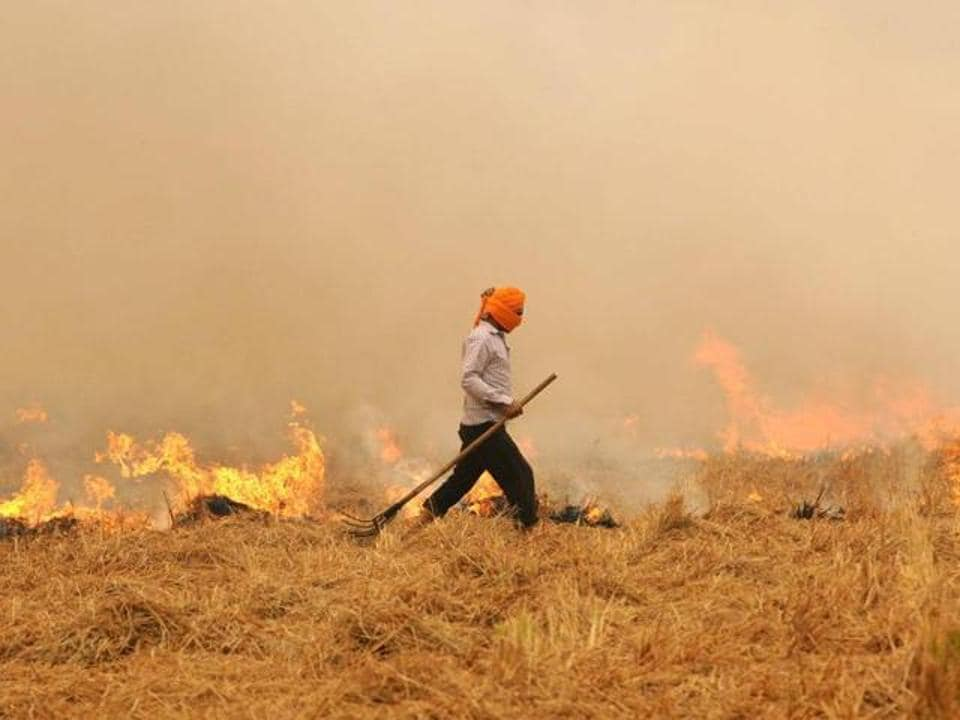 The report claimed 2,620 fire incidents had been spotted via satellite in Indian Punjab in 24 hours.