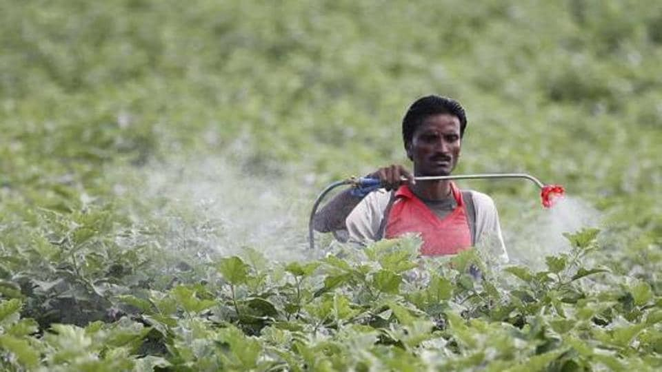 At least 50 farmers have died because of suspected pesticide poisoning since August this year.