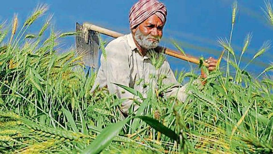 3% rural development cess is charged on crop sale.