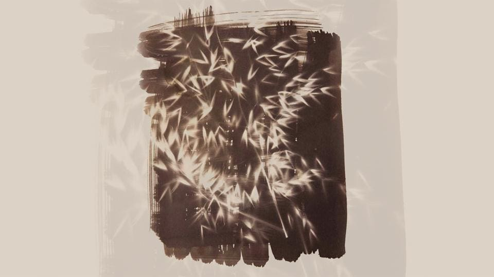 Salt print photograms of leaves and grasses from Aravallis made using salt from Sambhar lake and mixed with Silver Nitrate