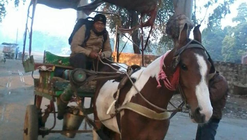 The Indian administration has decided to stop the horse-drawn carriages, citing provisions of the Prevention to Cruelty of Animals Act.