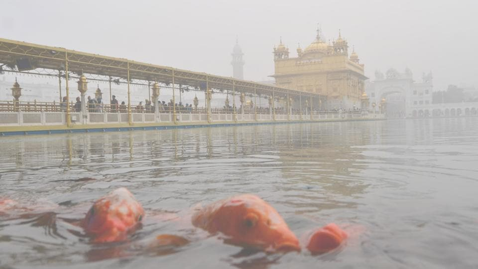 Devotees offer prayers at the Golden Temple on a foggy morning in Amritsar on Tuesday. (Sameer Sehgal / HT Photo)