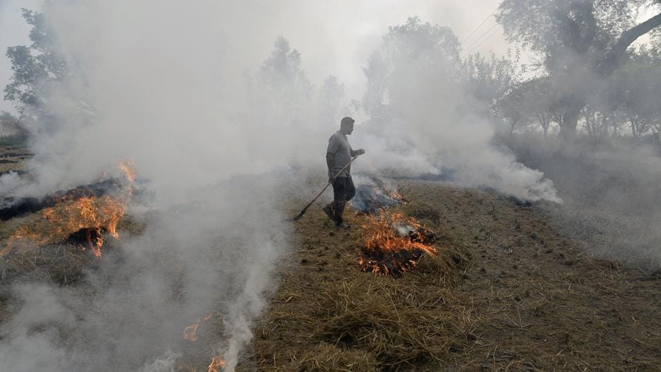 A farmer burns paddy stubble in a field on the outskirts of Jalandhar, Punjab, on November 10, 2017.