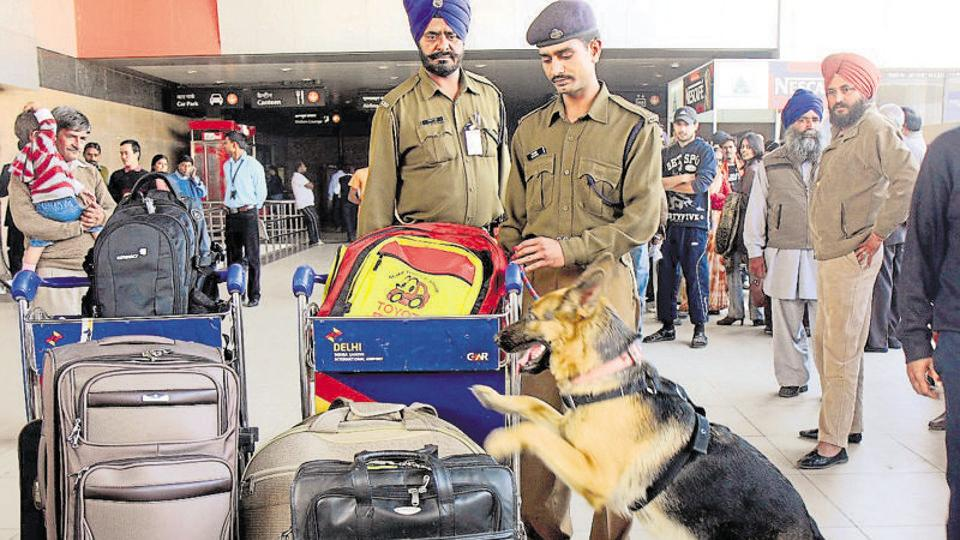 CISF personnel with a sniffer dog check baggage at the IGI airport in New Delhi. (HTFile Photo)