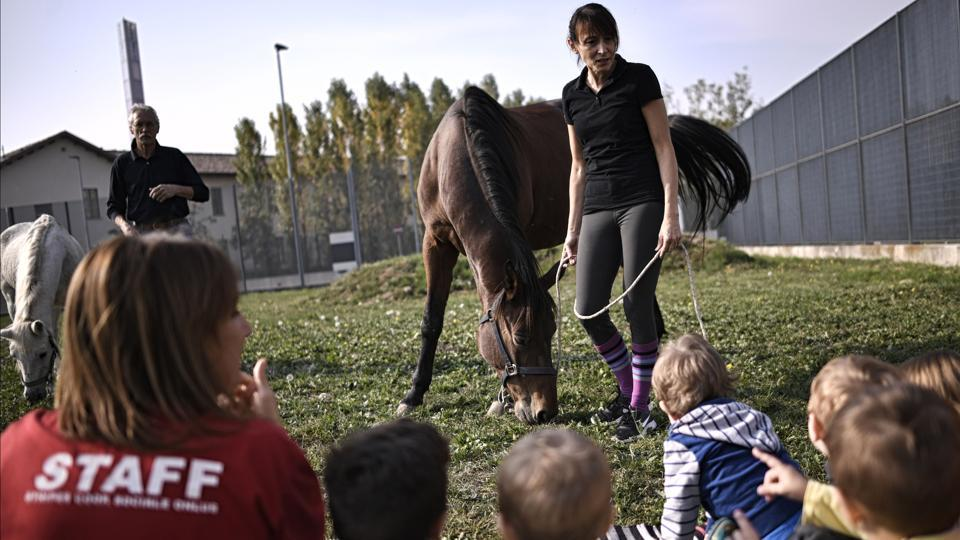 Children are introduced to the world of horses at the Bollate Penitentiary's nursery. With no distinction made between the children, the nursery sends a message about integration and breaking down walls. Inside, experts organise nature and animal-based activities, making use of the prison's large garden and play areas.  (Marco Bertorello / AFP)