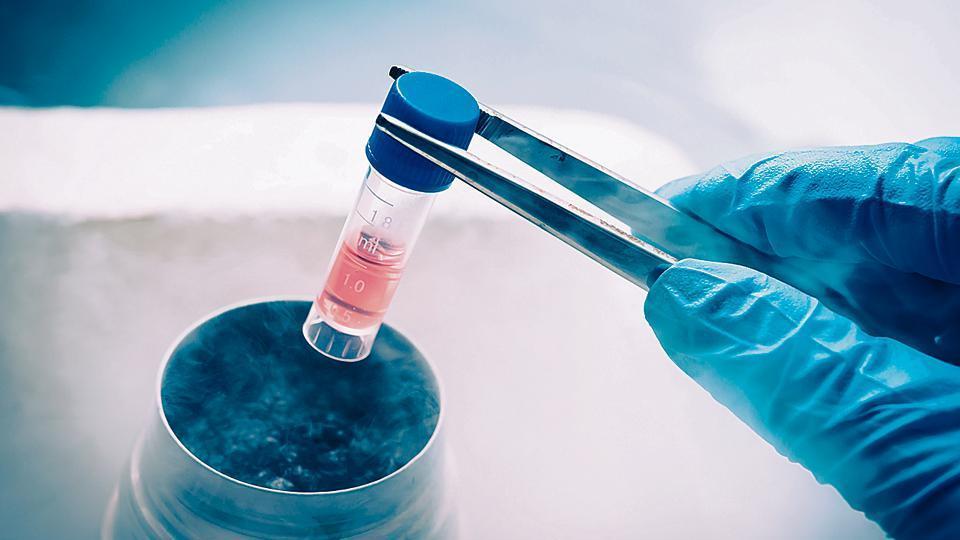 Mumbai news,Maharashtra,stem cell doners