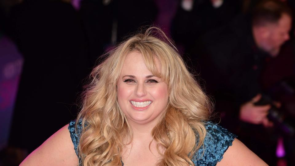 """Pitch Perfect star Rebel Wilson revealed that earlier in her career, she had a """"hotel room encounter"""" with a top director"""