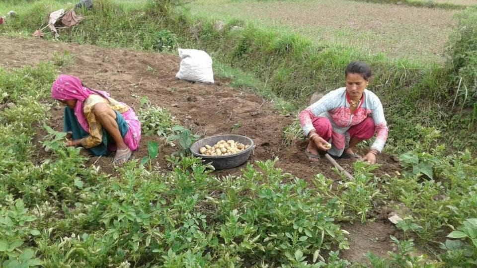 watershed management,monsoon-based farming,Uttarakhand