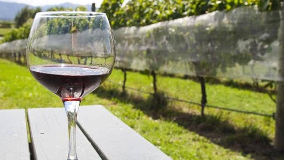Wine,Vineyards,Winery