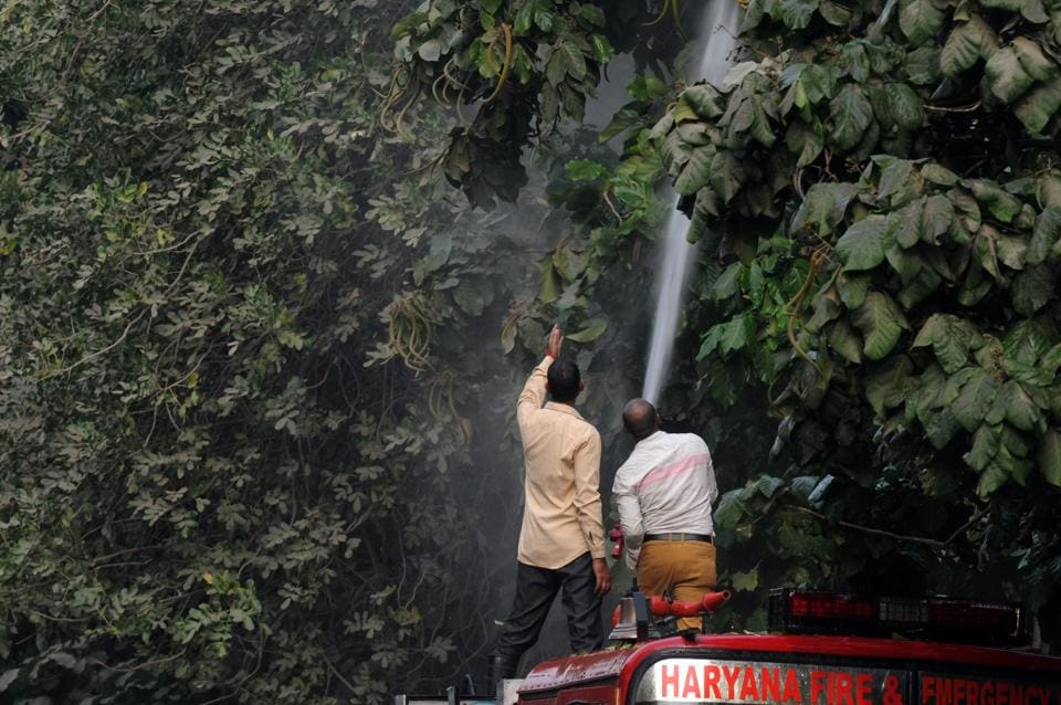 Firefighters sprinkle water on trees on a road in Sector 31/40 on Tuesday as part of measures to reduce dust pollution.