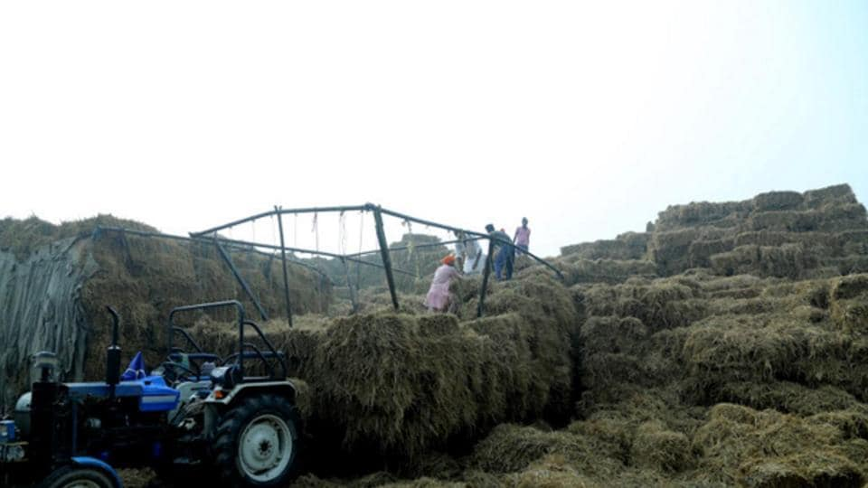 biomass plants,paddy stubble,Malwa