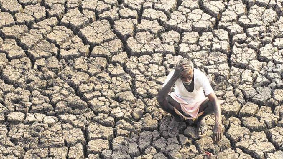 Punjab,farm suicides,farm suicide cases