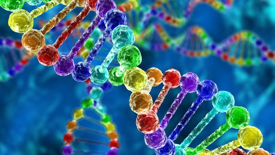 Image result for rainbow dna