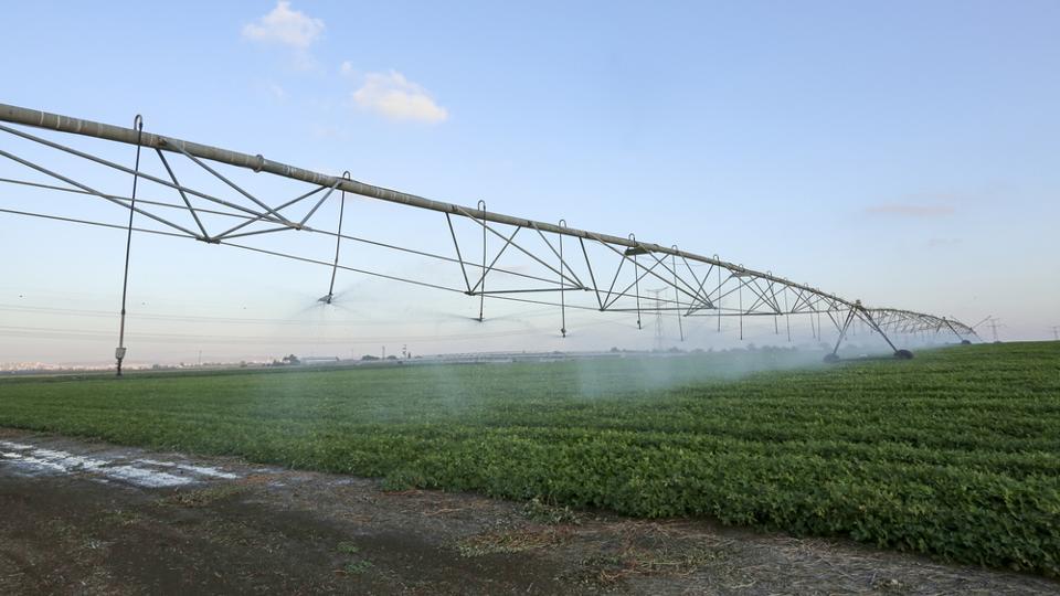 Telangana,Study tour,Israeli agricultural techniques