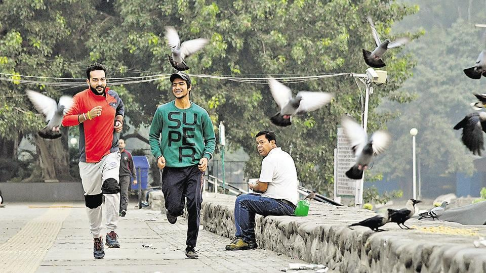 Even though smog has crippled air and rail traffic across north India, here in Chandigarh it has not been able to dampen the spirits of joggers and morning walkers at Sukhna Lake. (Karun Sharma/HT)
