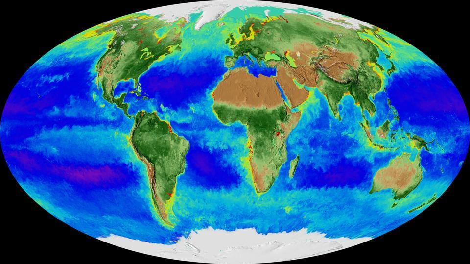 This image made from video released by NASA in November 2017 shows a Mollweide projection of the Earth and its biosphere derived from two decades of satellite data starting in September 1997 going through September 2017.