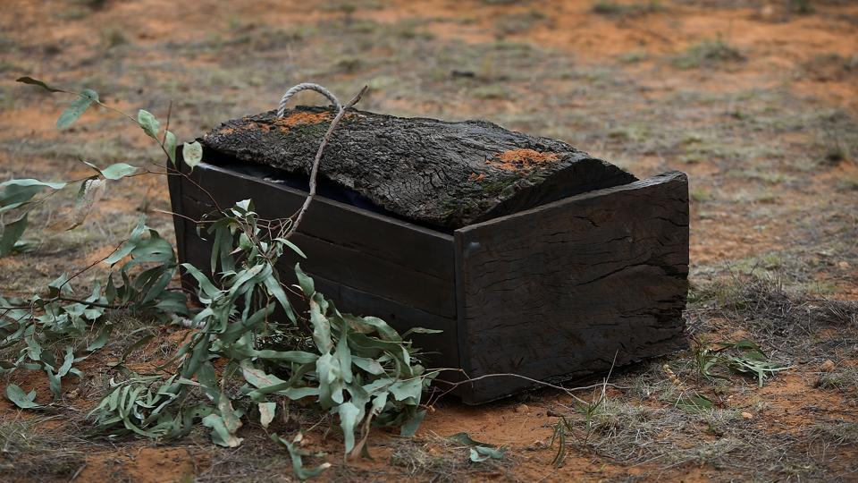 The 40,000 year old remains of Mungo Man contained in a casket made from 5000-year-old red gum arrive at the Lake Mungo ceremony on November 17, 2017. Though subsequent discoveries have pushed the date of human arrival in Australia further back, Mungo Man helped prove the ancient age of Aboriginal civilisation --the world's oldest continuing culture-  dating back around the time Neanderthals occupied Europe. (Lisa Maree Williams / Getty Images)