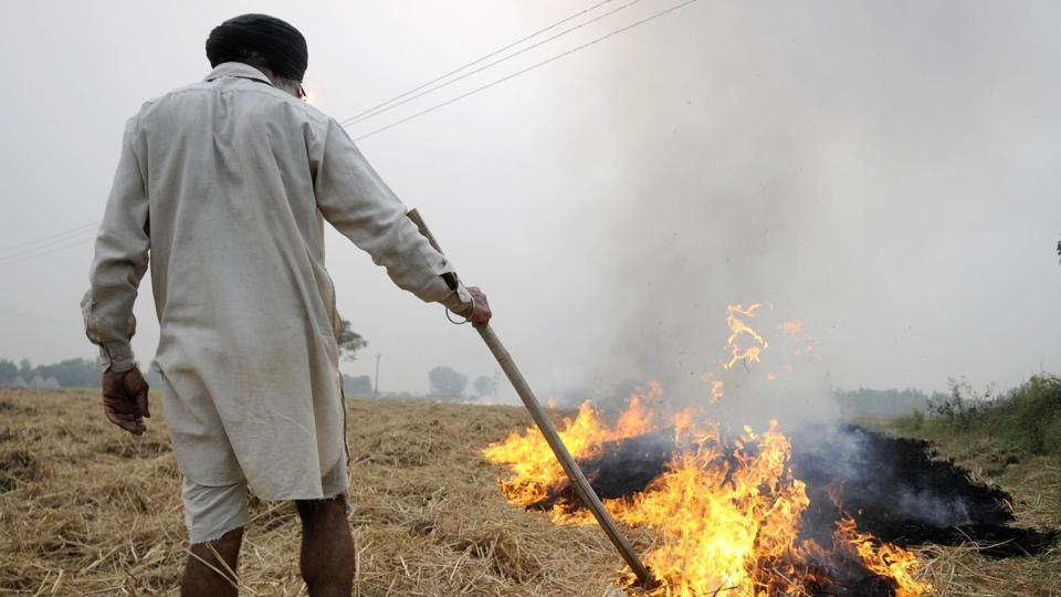 delhi,delhi news,stubble burning