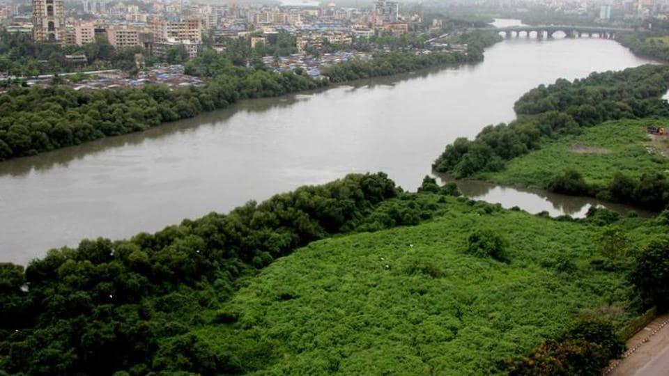 Maharashtra,mangroves,Mumbai