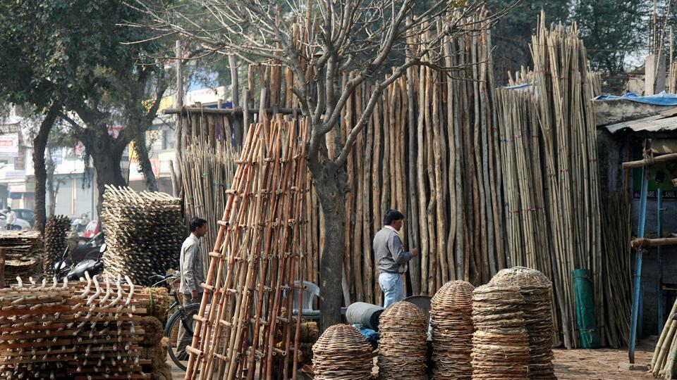 Forest Act,Indian Forest Act,Bamboo
