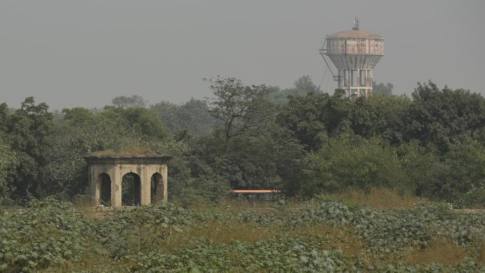 The garden area has turned into a veritable jungle with wild shrubs growing all over. A source said the conservator, Indian National Trust for Art and Cultural Heritage (INTACH) had completed nearly 40% of the work when defence estates officer Alok Gupta raised the objection.  (Vipin Kumar / HT Photo)