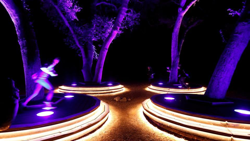 "Visitors interact with the ""Symphony of Oaks"" installation at Descanso Gardens. The 150-year-old oaks are surrounded by platforms of light which ring out with the Westminster Quarters chime when stepped on.   (Mario Anzuoni / REUTERS)"