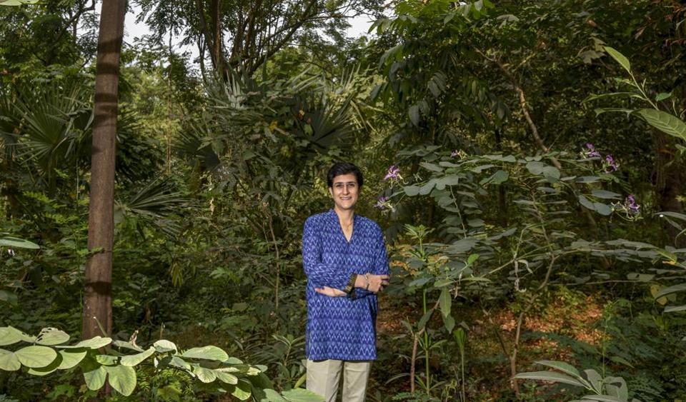 carbon dioxide,Mumbai Environment,Mumbai trees
