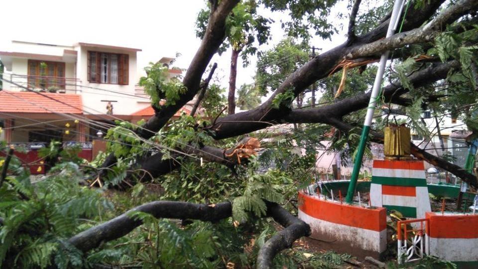 Tamil Nadu,Kerala rain,Torrential rains