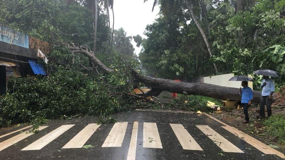 Scenes like this, of trees uprooted and damage to infrastructure were seen in the wake of cyclone Ochki in Thiruvananthapuram. At least 2,000 families living near sea and low-lying areas have been evacuated and moved to safer places. (HT Photo)