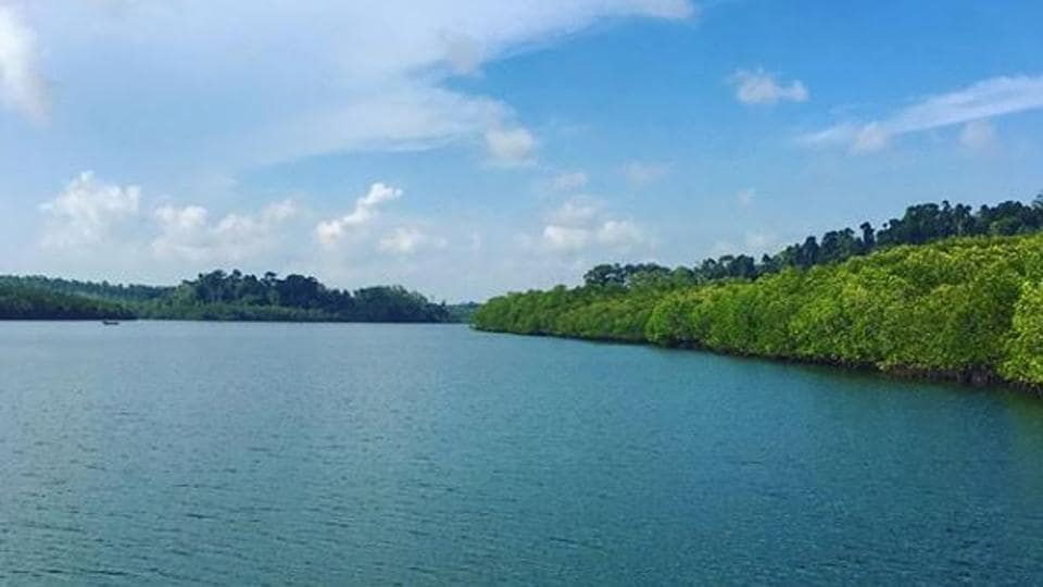 Baratang island lies 150 km north of Port Blair.