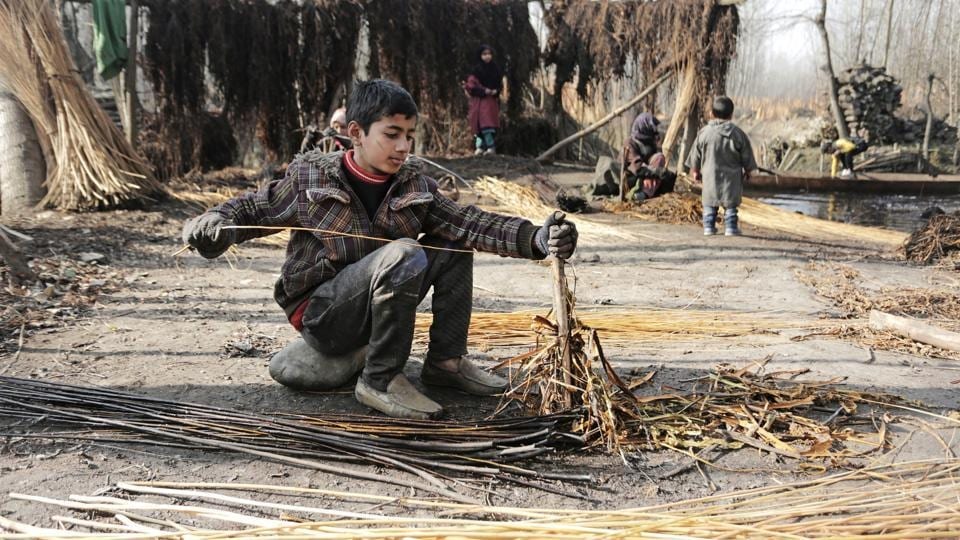 A boy is seen dehusking willow twigs near Srinagar. The Kangri is an economical personal heater when venturing out in the region's sub-zero winters. Its worth is especially notable in areas where electricity can be scarce and charcoal, which powers these pots is cheaper than gas or oil based alternatives. (Waseem Andrabi / HT Photo)