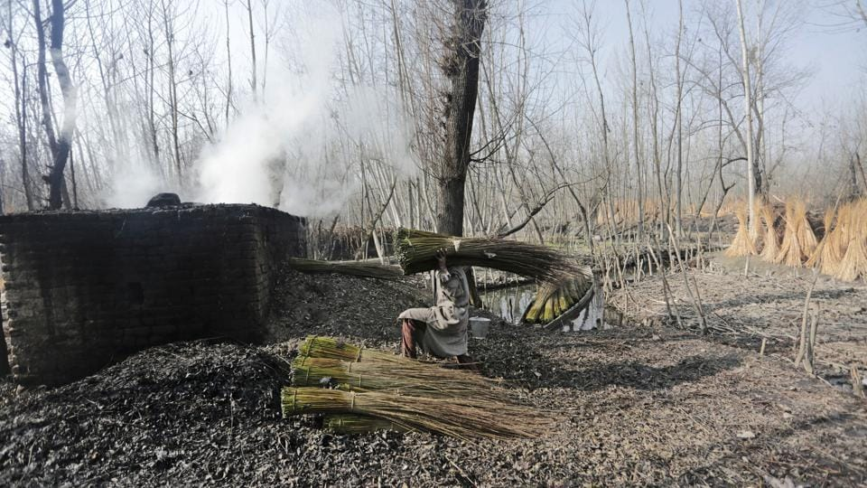 A man unloads bundles of willow twigs next to a kiln for processing. Manufacturing these artisanal pots is laborious and requires craftsmanship. Twigs are collected from deciduous shrubs and willow trees, the outer bark scraped and peeled after a process of soaking and drying, finally woven around bowl-shaped earthenware. (Waseem Andrabi / HT Photo)