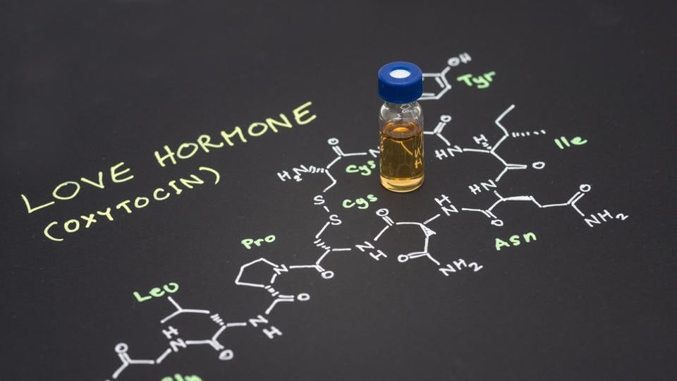 The team created a new molecule by introducing small modifications to the structure of oxytocin, which reduced the activity of receptors linked to some side effects.